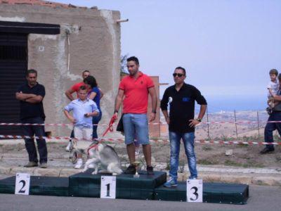 Montemaggiore2