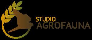 logo_sfondo_trasparente