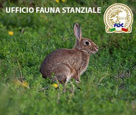 Fauna Staziale